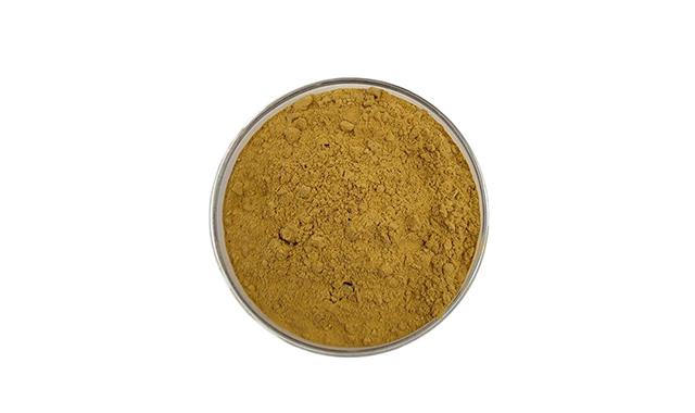 1.Chlorogenic acid 98
