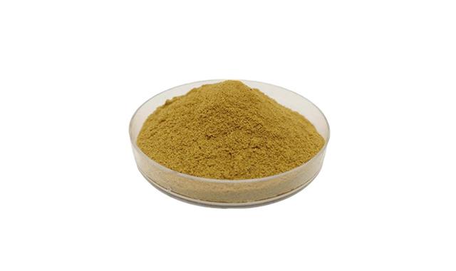 1.Ginkgo Biloba Extract