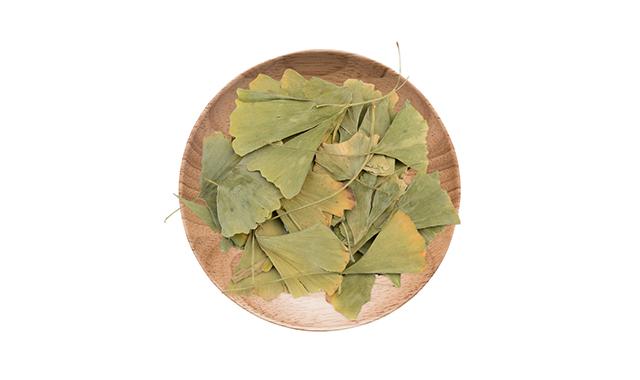 1.Ginkgo leaf