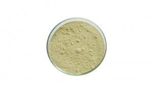Cheapest Price China Top Grade Citrus Aurantium Extract Powder High Quality 520-26-3 Hesperidin