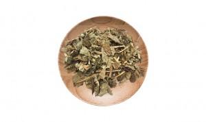 100% Original Factory Foshou - Traditional medcinal herbs houttuynia cordata roots Yu Xing Cao – Drotrong