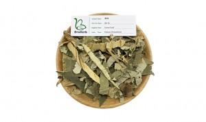 China Gold Supplier for Hawthorn Berry - Natural herbal medicine lotus leaf Folium Nelumbinis He Ye – Drotrong