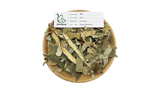 1.Lotus leaf