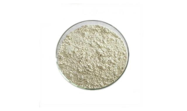 1.Methyl hesperidine