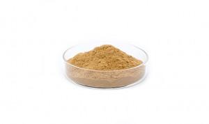 Hot sale Icariin 60 - Pueraria flavonoids Kudzu root extract in bulk – Drotrong