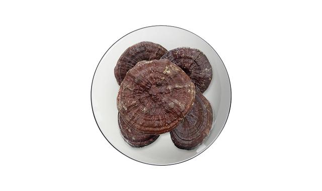 1.Reishi mushroom