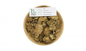 Dried herbal medicine rhizoma chuanxiong radix ligustici chuanxiong