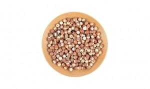 Hot sale Fructus Chaenomelis - China herbal medicine Gorgon fruit Semen Euryales qian shi for weight loss – Drotrong
