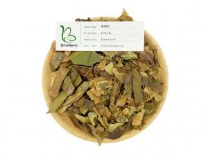 Chinese medicinal herbs folium eriobotryae pi pa ye loquat leaf for cough