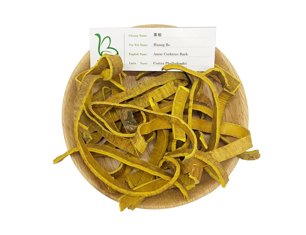 Dried medicinal herbs amur corktree bark huang bo cortex phellodendri for sale